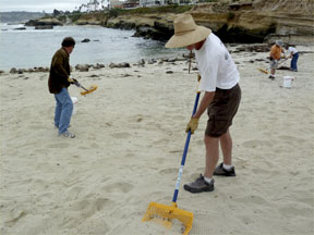 Animal waste being removed form La Jolla childrens pool.